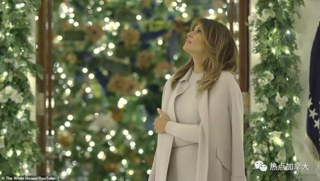 北美真圣诞树奇货可居价格高涨 但白宫圣诞照简直美翻了